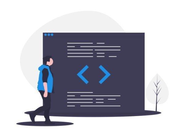 WordPress Entwickler in Berlin - Theme-Erstellung, Plugins und Widgets